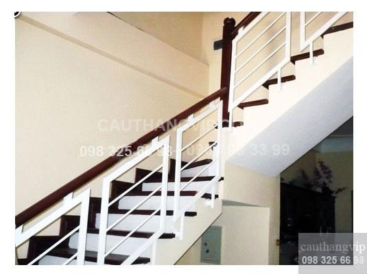 Cầu thang sắt VIP S12