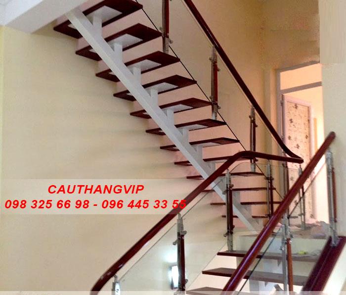 cau-thang-xuong-ca-vip10