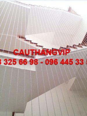 cau_thang_day_cap_VIP_C03